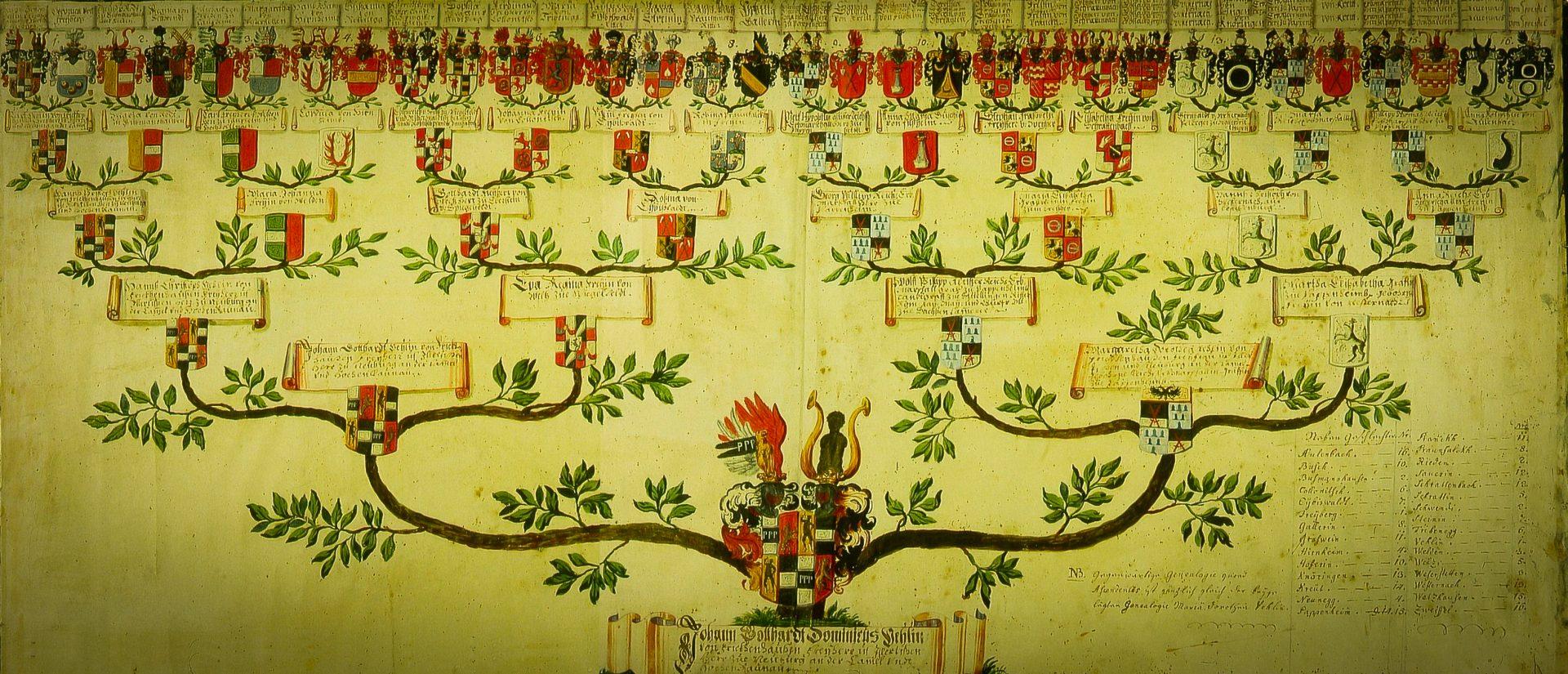 Stammbaum Vöhlin